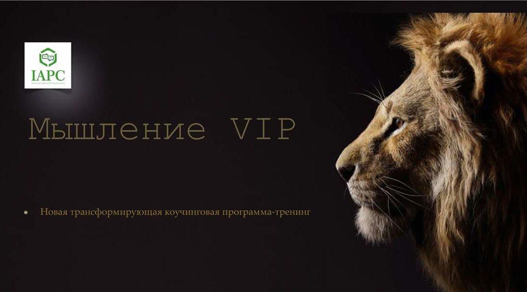 Тренинг Мышление VIP